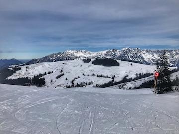 Austria-ski